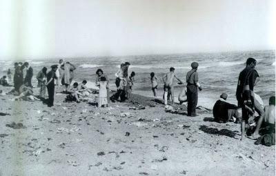 Argeles Sur Mer 120239